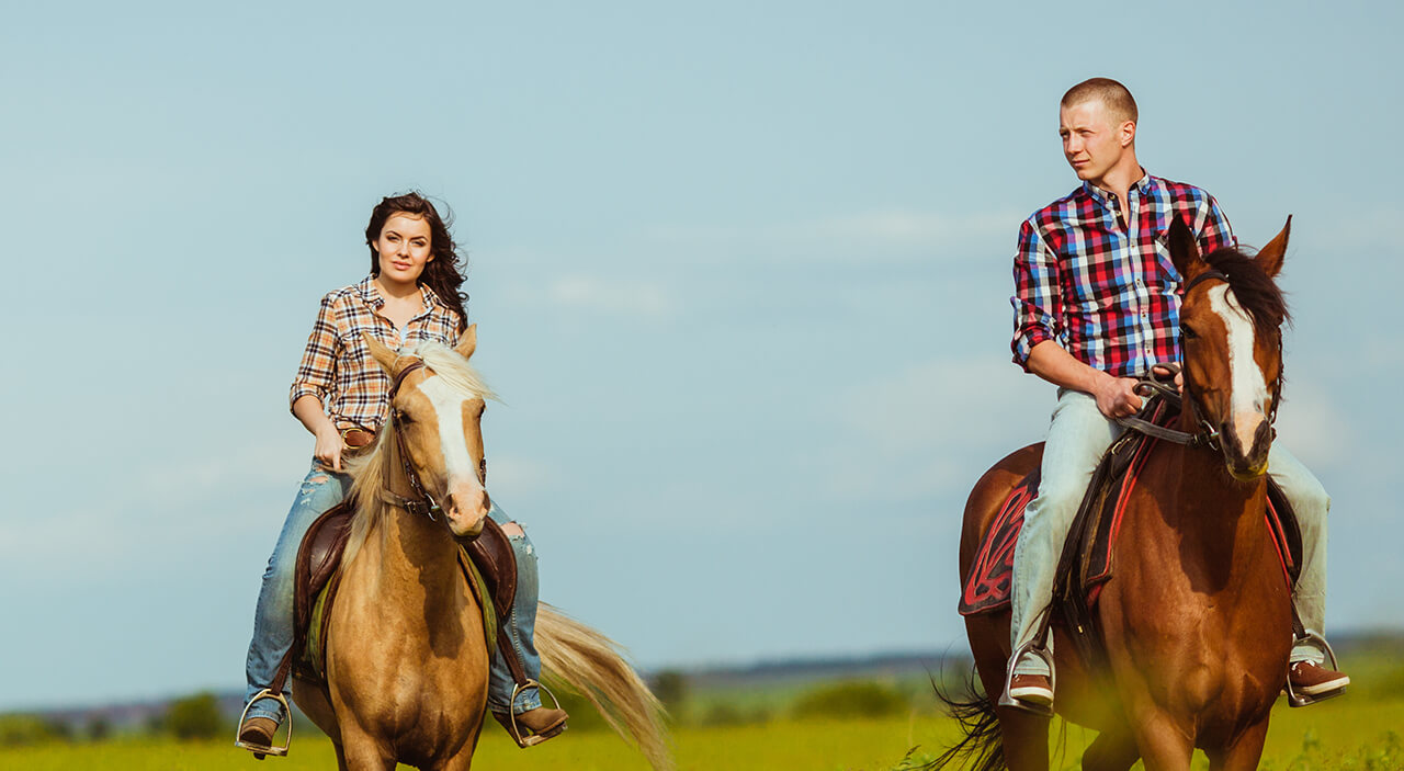 Woman and man riding horses in grassy field.